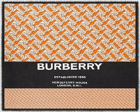 Платок Burberry  №K029