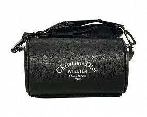 Сумка Christian Dior Модель №S648-1